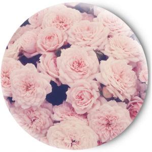 Одностороннее зеркальце Sweet Roses